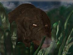 zachosaure